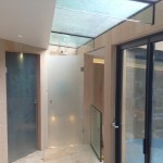Highgate Rooflight and Cast Glass Door